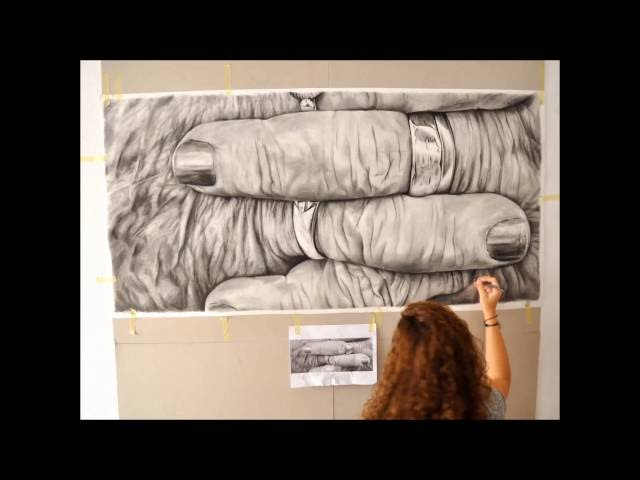 "Process of the drawings of the project ""Imperfect beauty: flowers without garden"" - Lidia Blázquez"