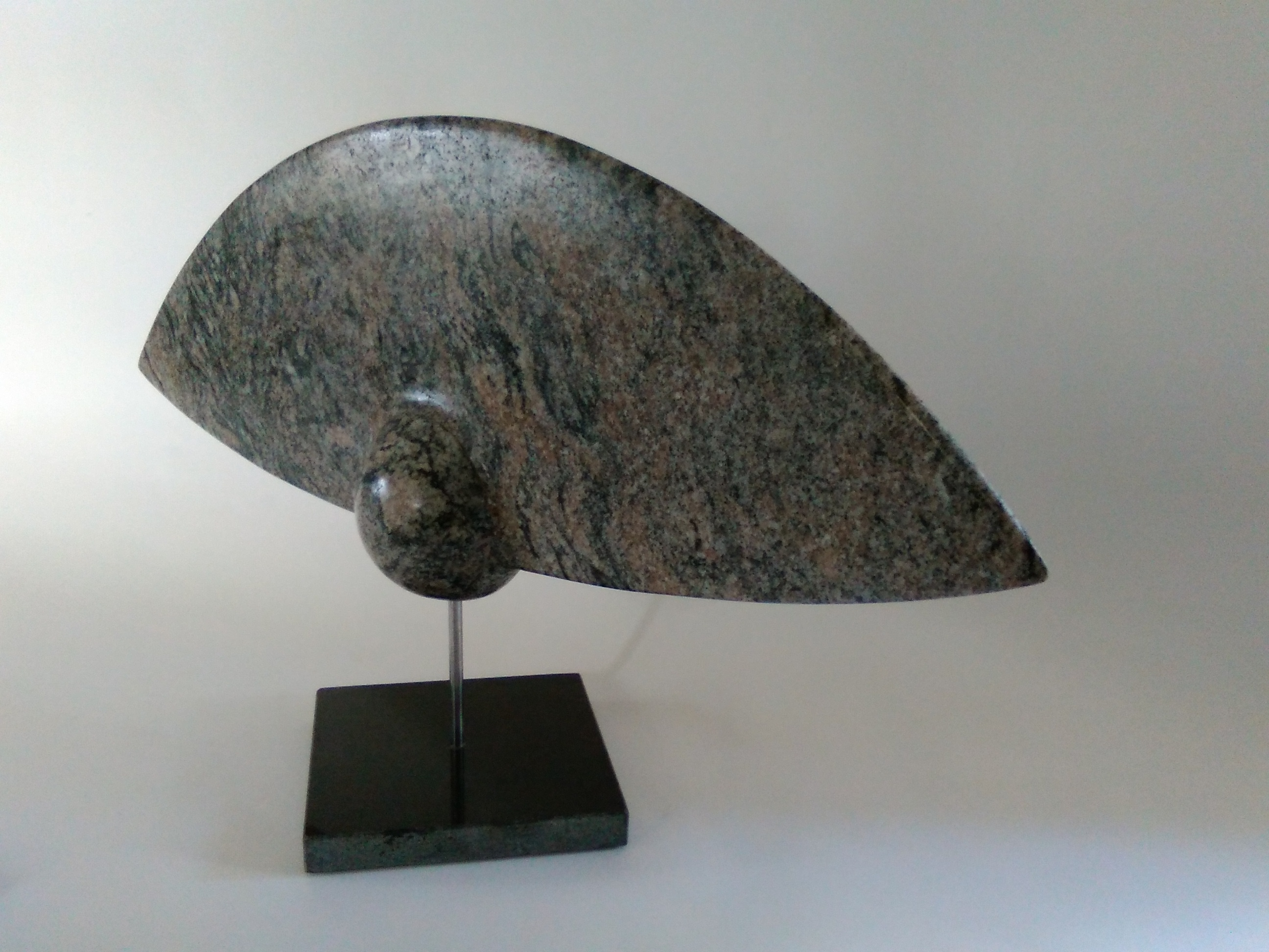 Semilla voladora 1 2 for Granito brasileno precio