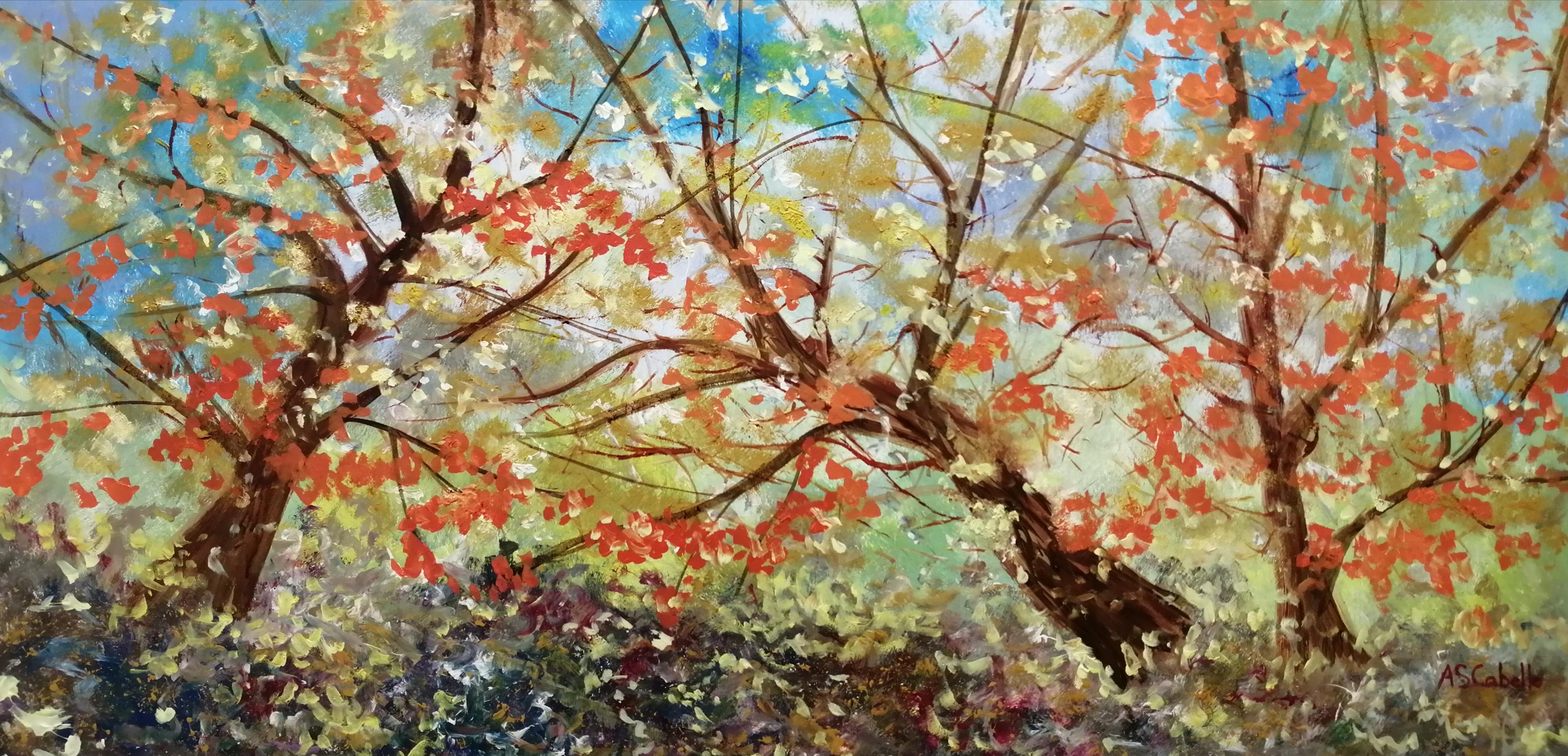 Bosque y luz en otoño