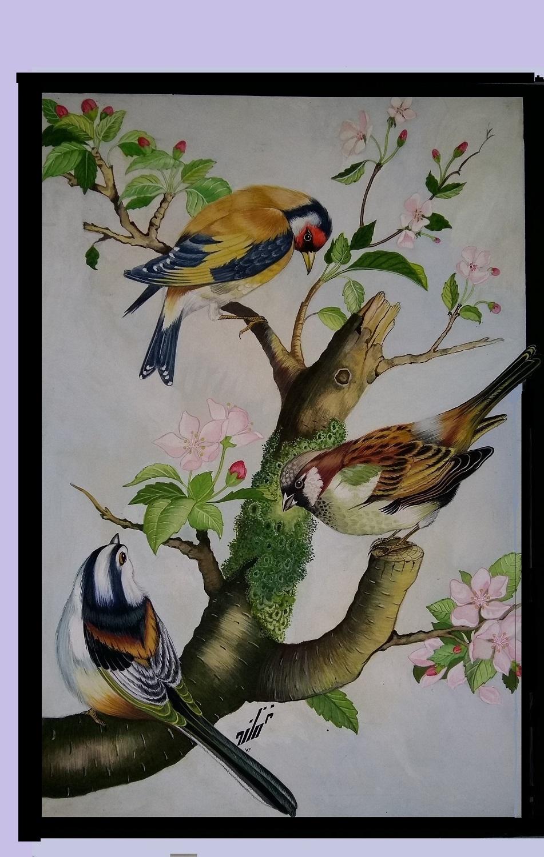 harmonía en la naturaleza