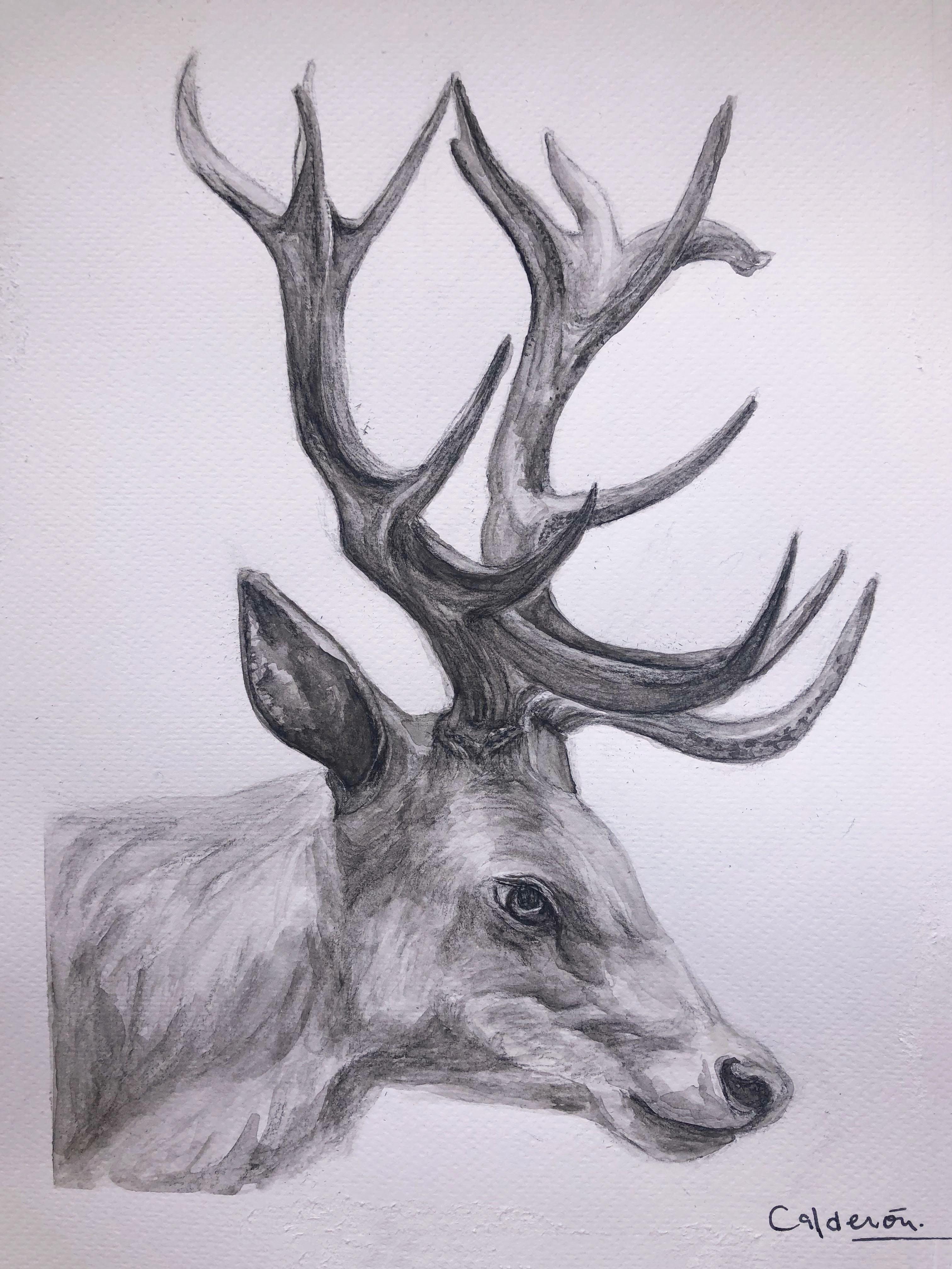 Sweet reindeer