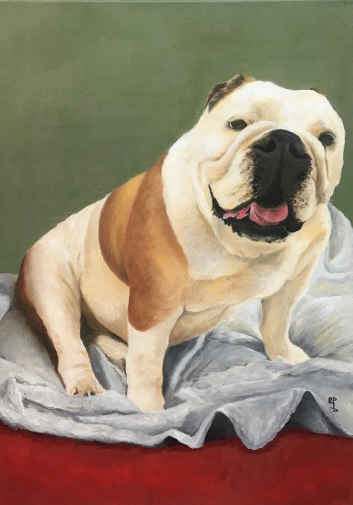Tare. Pet portrait on request