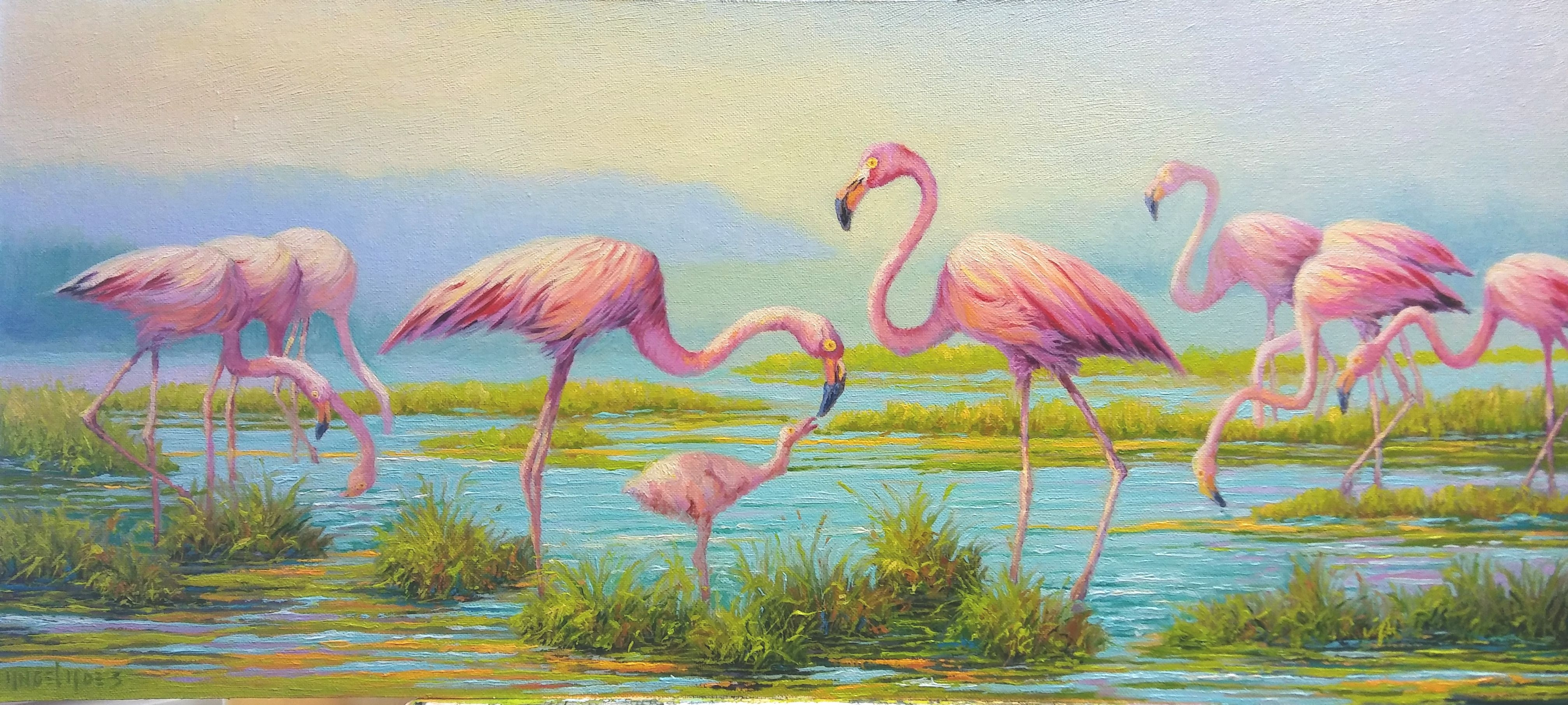 FAMILY OF PINK FLAMINGOS