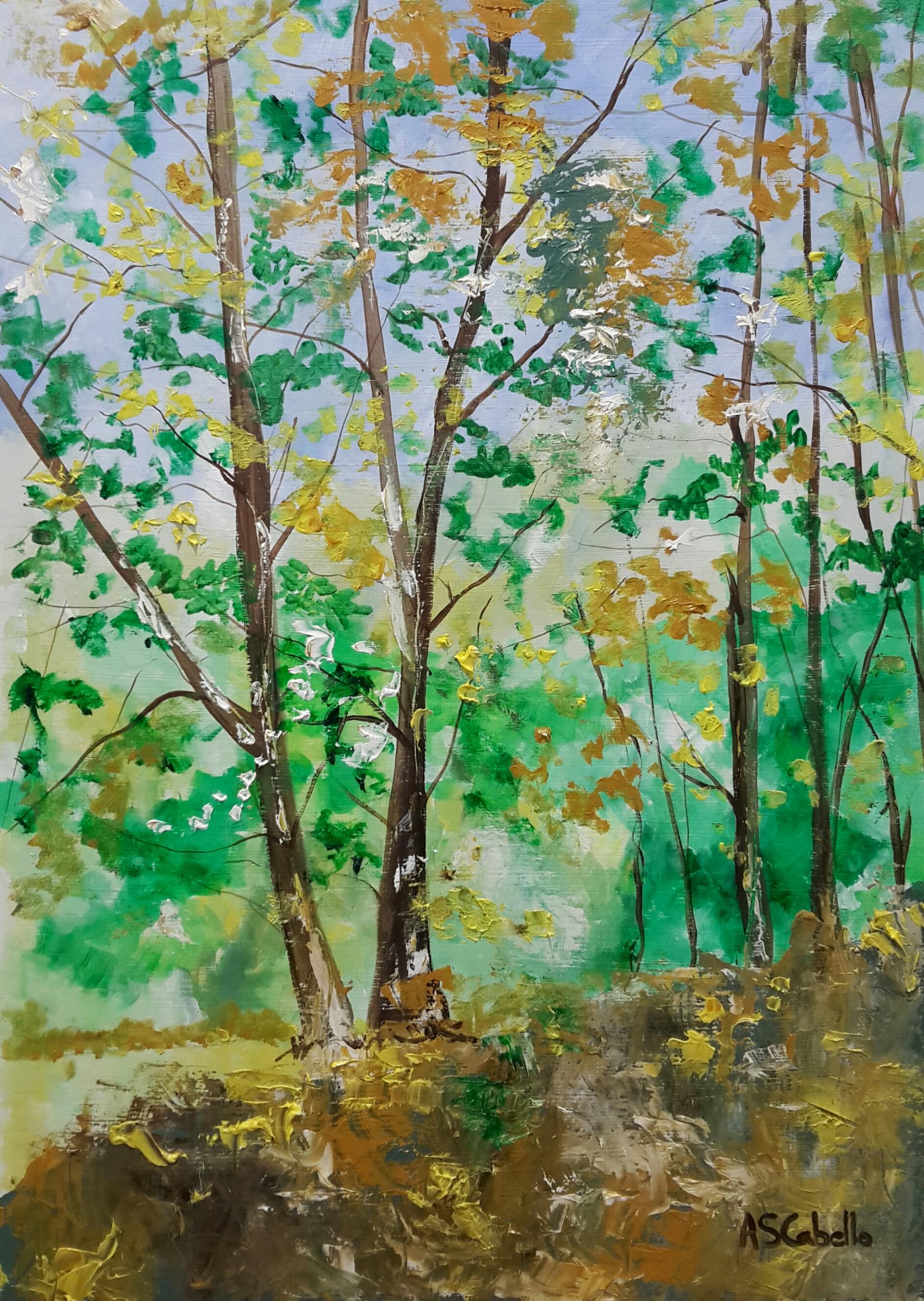 Un rincón del bosque frondoso