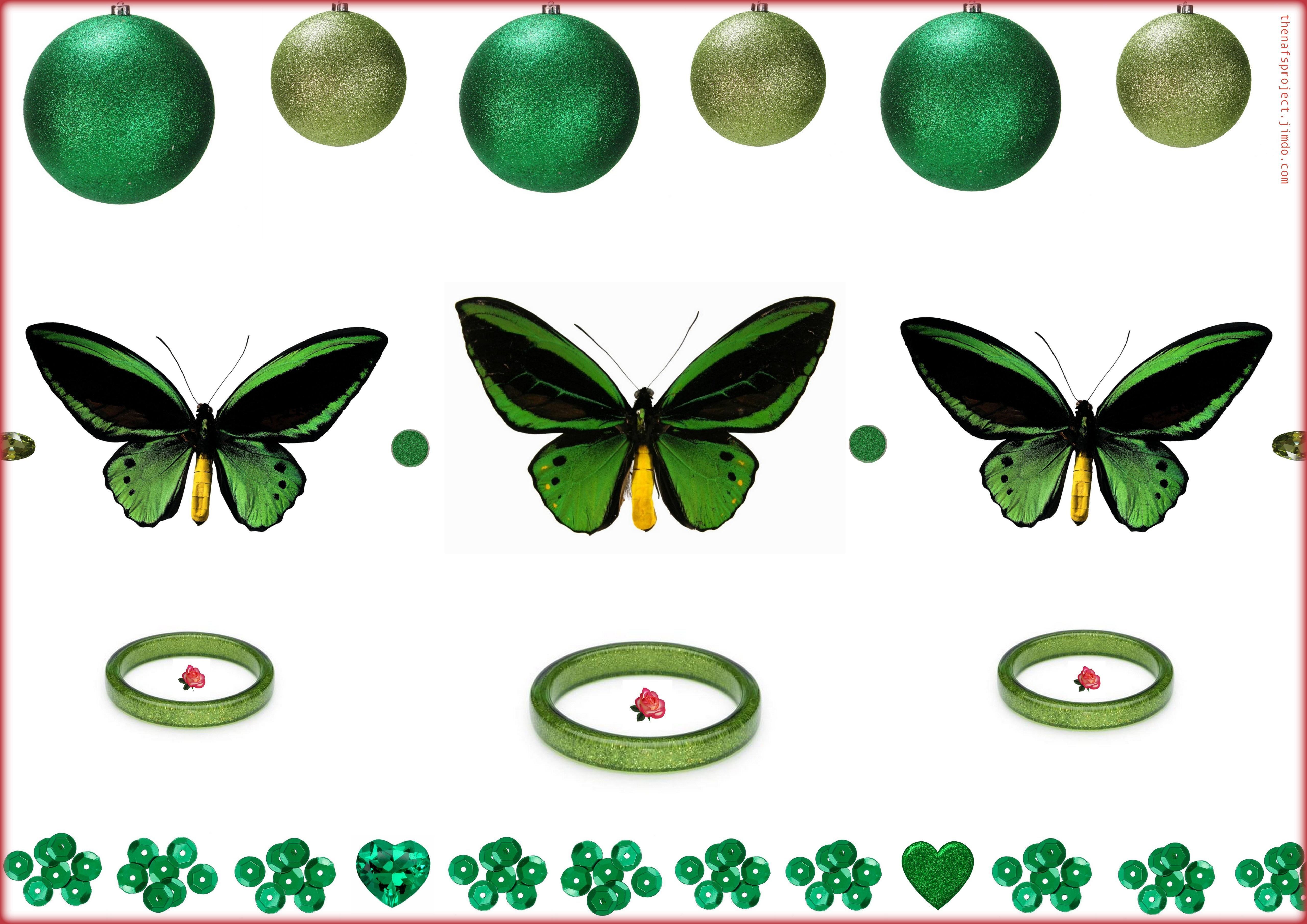 Butterflies1!