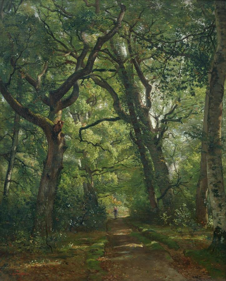Le Chemin sous bois,