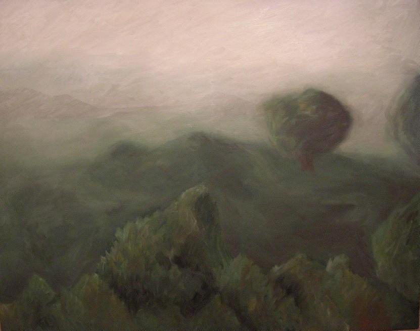 Winter fog fields Soria