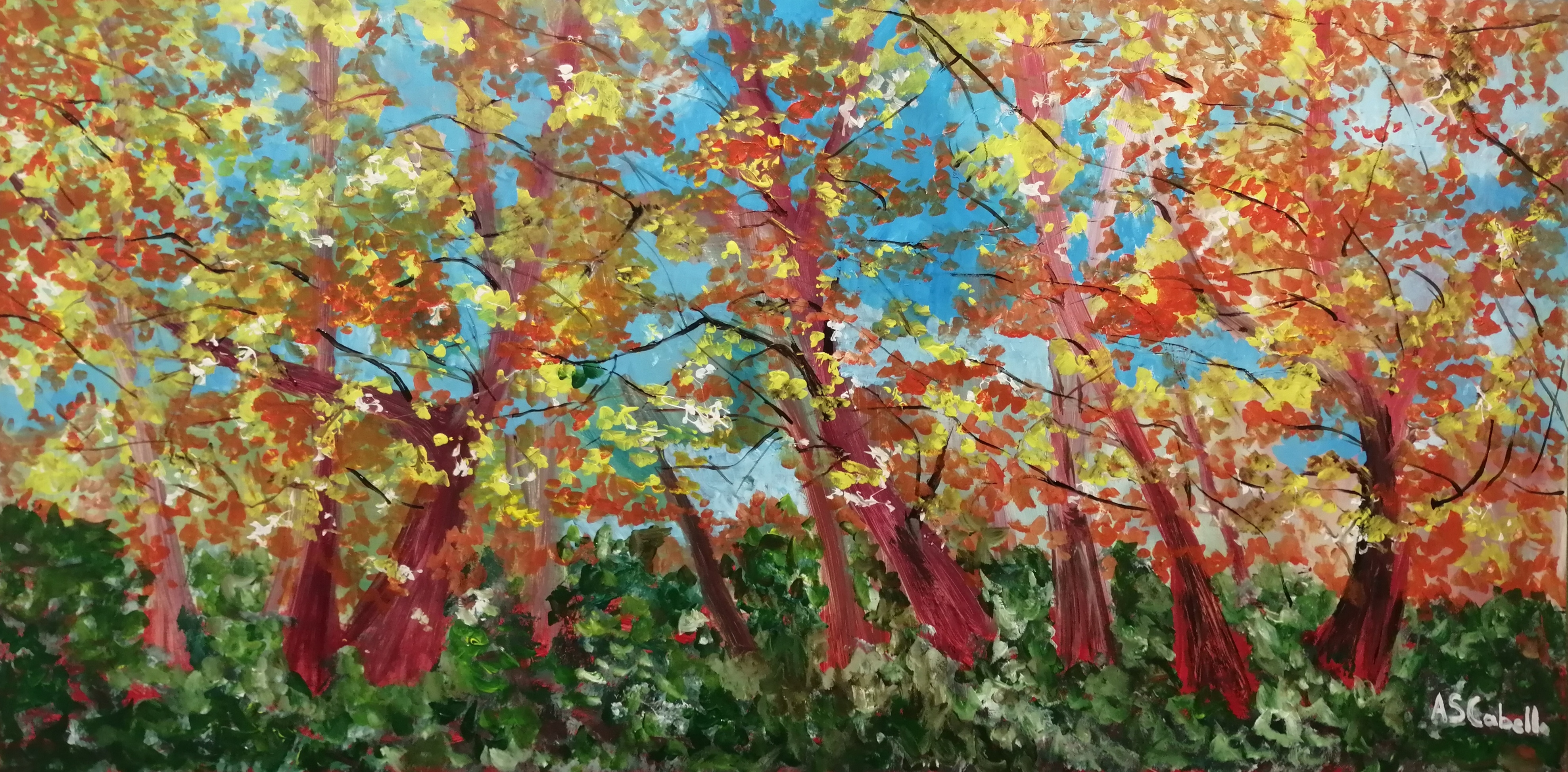 El otoño en el bosque