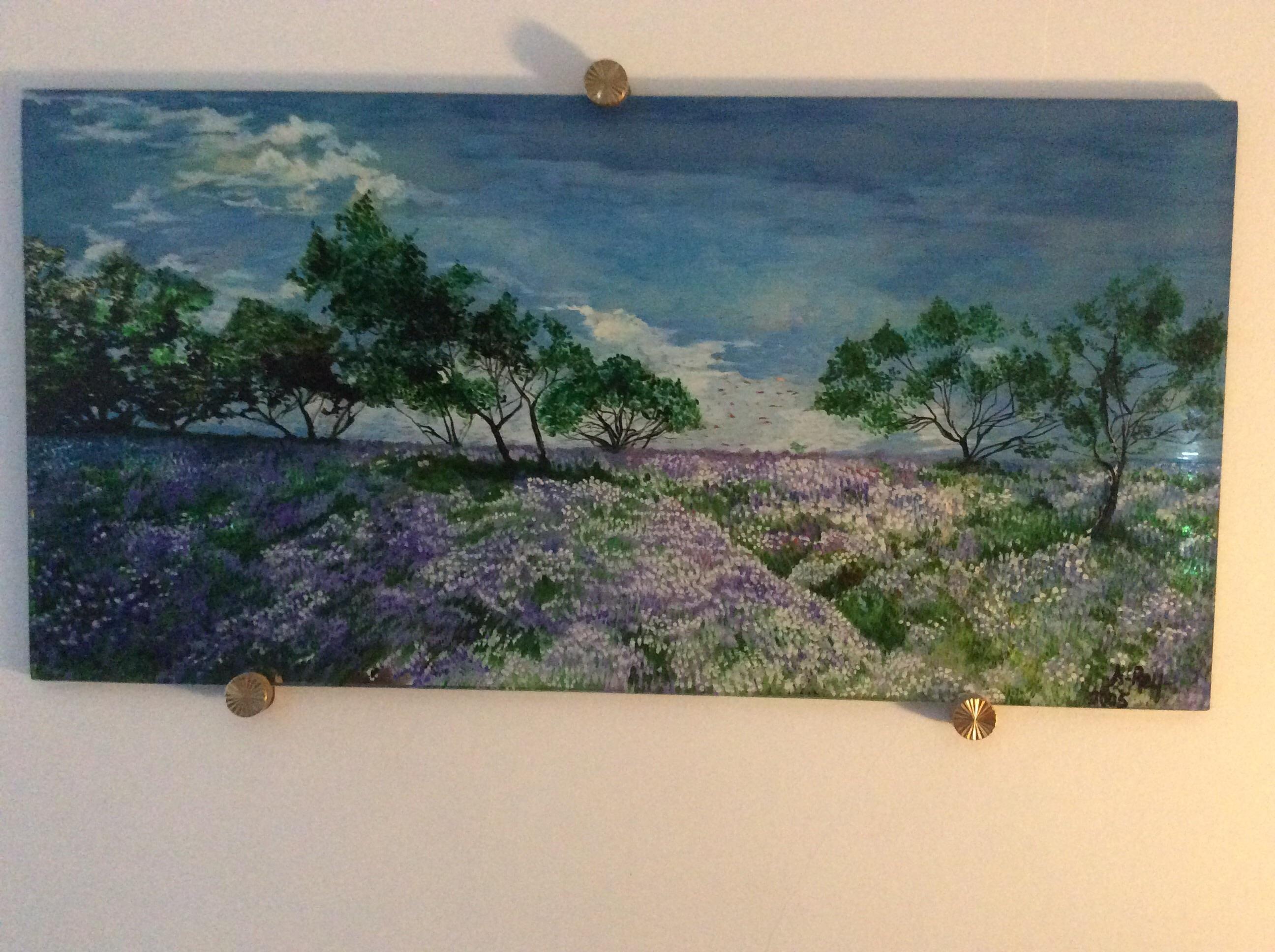 Field of lavenders