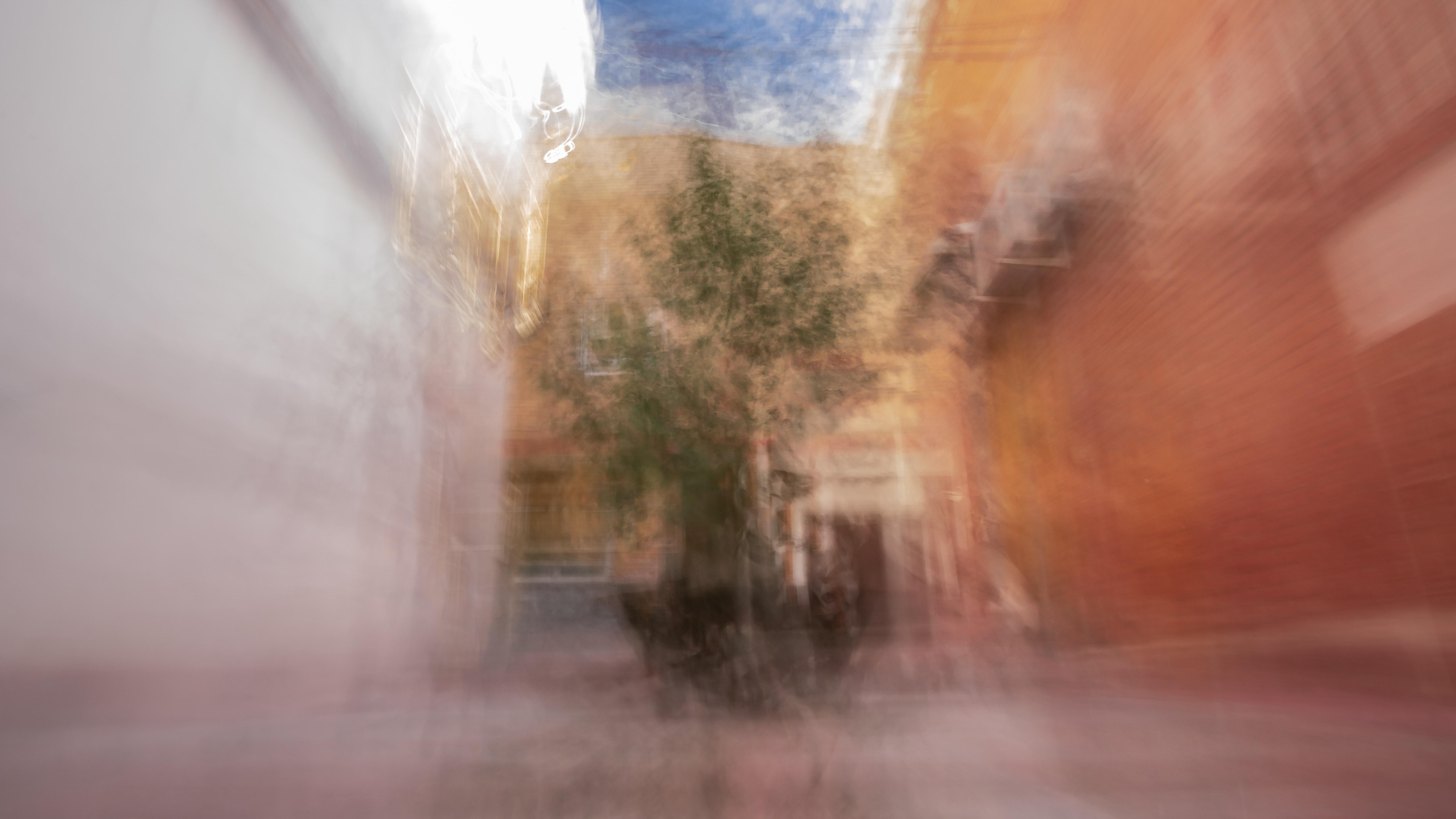 Eden Tree series, I