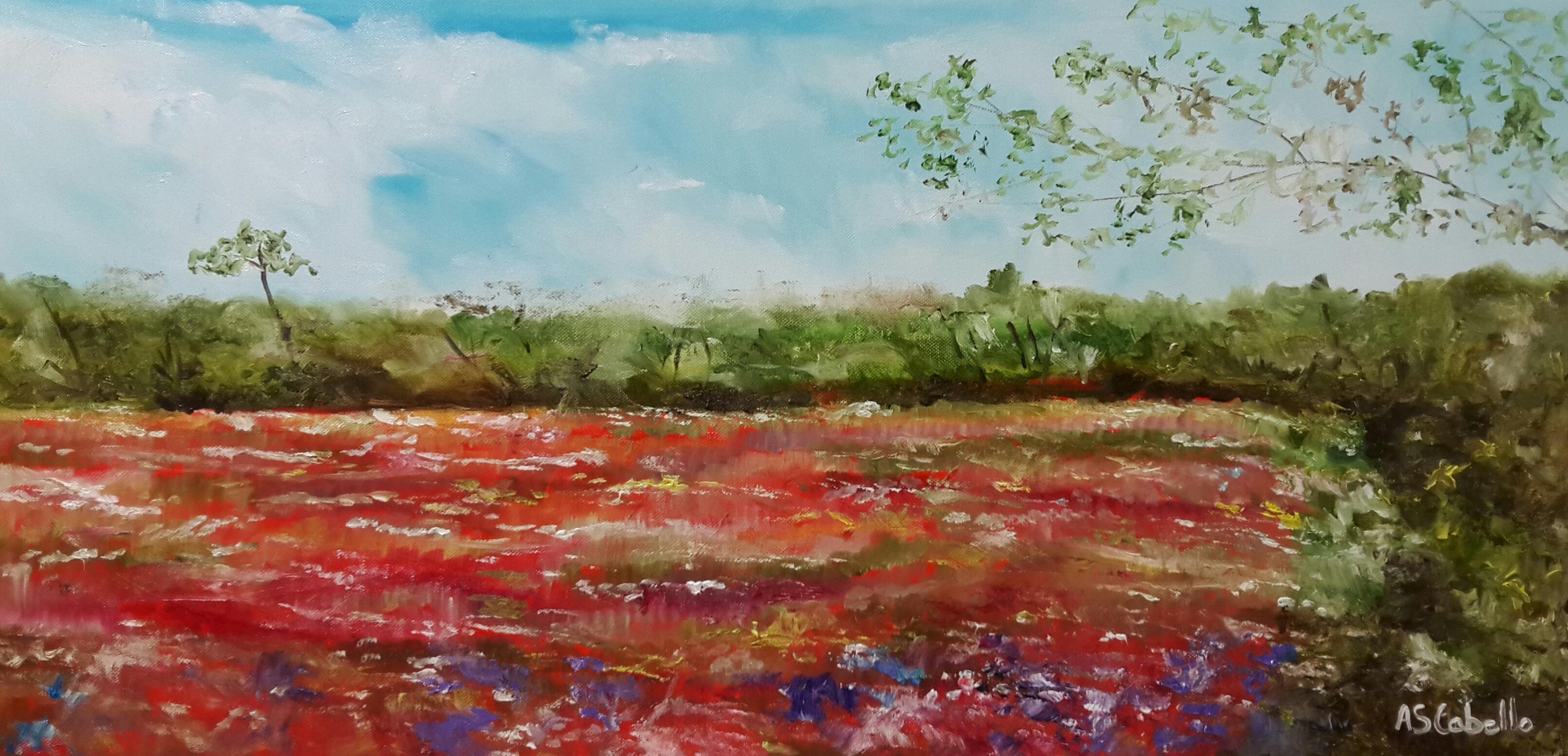 Primaveras en campos