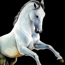 horse oleo.jpg