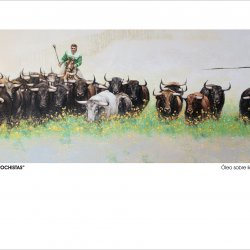 bulls and garrochistas