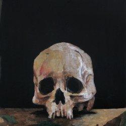 Cráneo / Skull