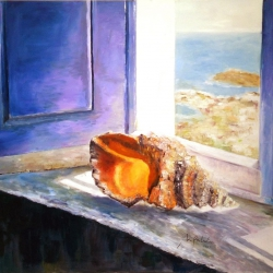 Shell in the window