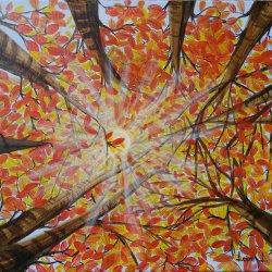 Sun rays in autumn