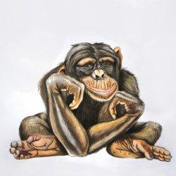 ape.jpg