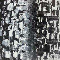 Contrasts (80 60 x cm.)