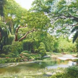 Bosque de La Habana