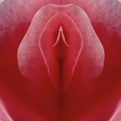 Symmetric love