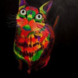 El gato colorao