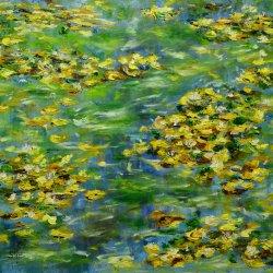 Golden waterlilies.