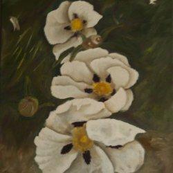 Jara flower