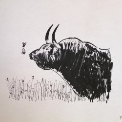 Bull and butterflies