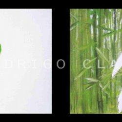 DIPTICO Periquito y Bosque de Bambúes australiano