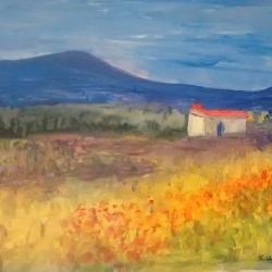 Manchego landscape