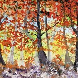Armonía en la mañana del bosque