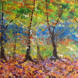 Nuevos coloridos en el bosque