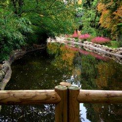 Autumn, Retiro Park Pond