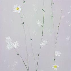 Flores. 19 margaritas