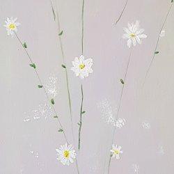 Flores. 18 margaritas