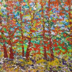 Vida y color en el bosque