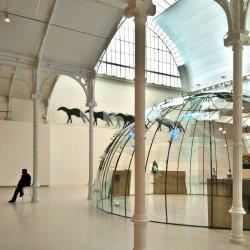 Velázquez Palace -Installation-