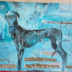 Lonely greyhound
