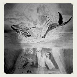 Danza de ballenas