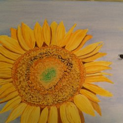 Sunflower with bumblebee
