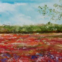 Springs in fields