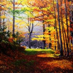 El color efímero en el paisaje