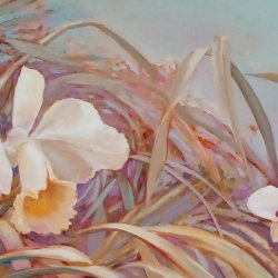 """""""Orchids to the Canaries"""""""