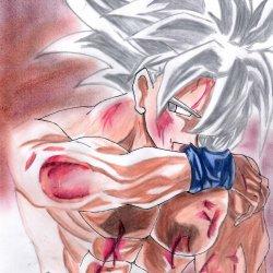 Goku ultra instinc