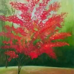 My red tree