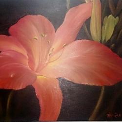 Flor por la noche