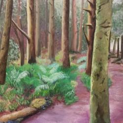 forest-07.jpg