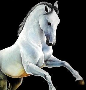 caballo oleo.jpg