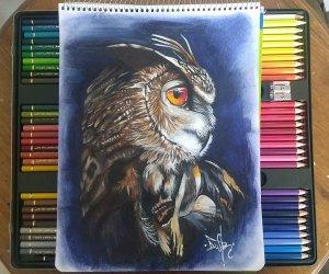 Realistic owl.