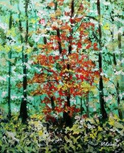 Árboles en otoño del bosque